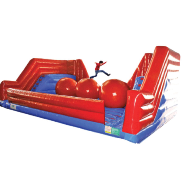 leaps & bounds inflatable rental party Michigan