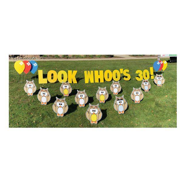 owls yard greetings yard cards lawn signs happy birthday party rentals michigan 2